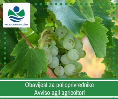 Obavijest vinogradarima! / Avviso ai viticoltori!